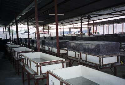 Large moulds for foamed concrete blocks