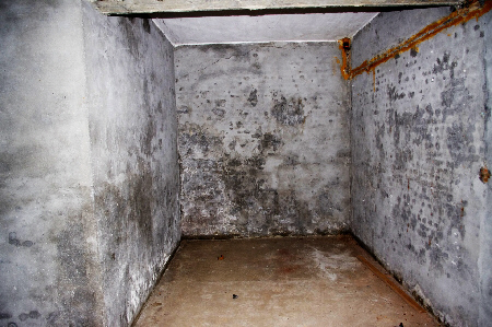 How Do I Damp Proof My Basement Or Cellar, How To Seal A Damp Basement Wall